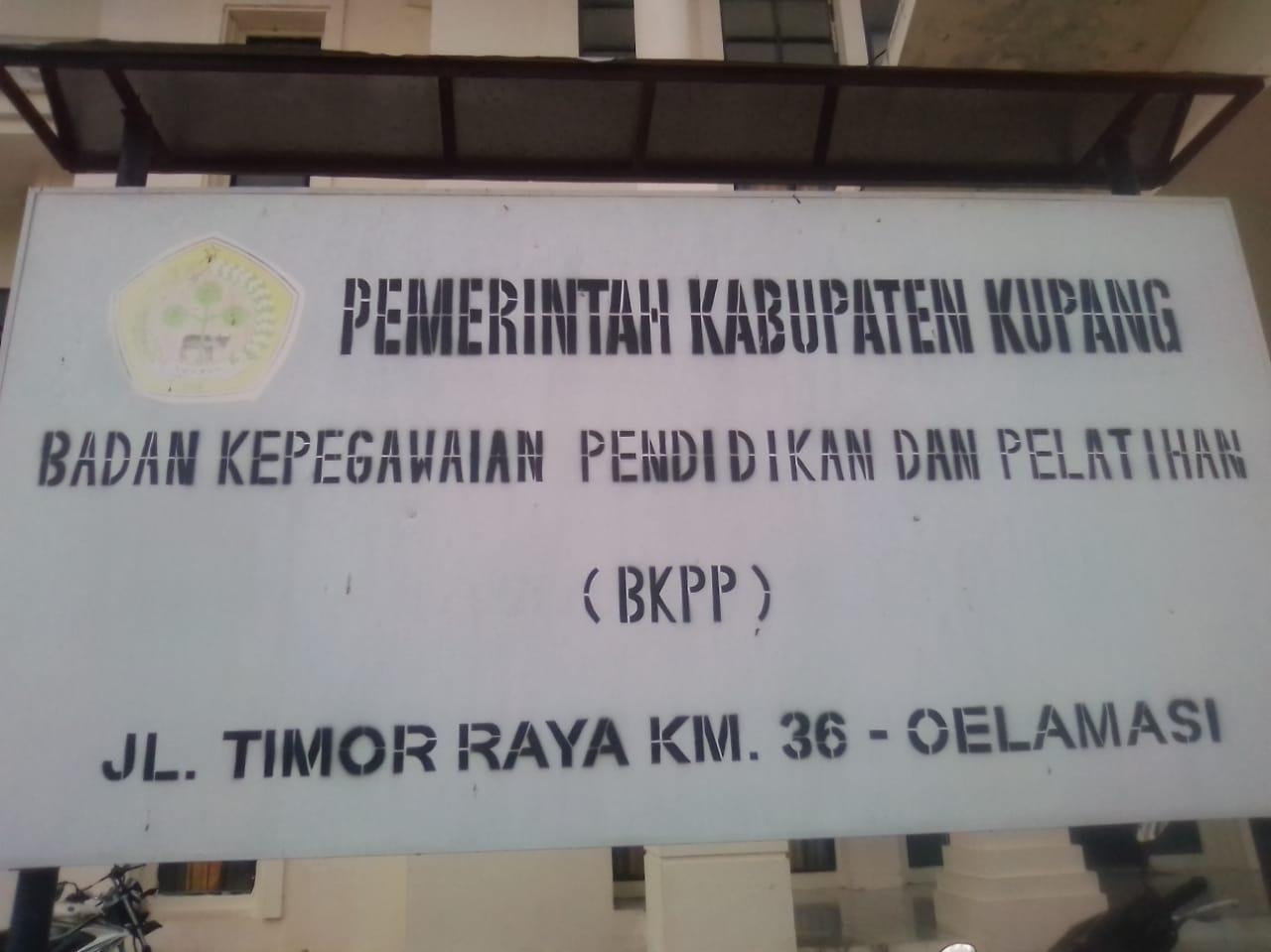 Ujian Seleksi Kompetensi Dasar CPNS Kabupaten Kupang Dimulai Hari Ini Tanggal 6 November 2018