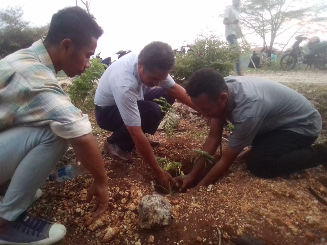 Pembantu Rektor III Hadiri Penanaman Anakan Pohon Oleh KMK Se-Undana