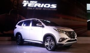 All new terios